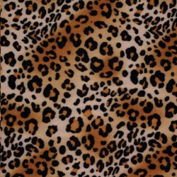 Rental store for Napkin Leopard PRINT in Omaha NE